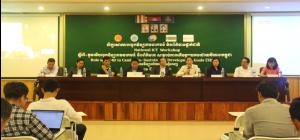 Panel Sharing Session